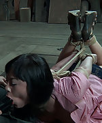 Roped, hogtied, used, dildoed and vibed