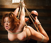 Tied to the ground, suspended in the air, dildoed and vibed